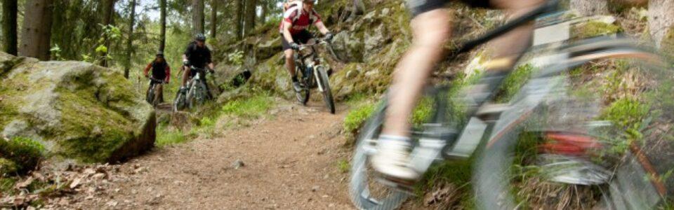 _c__Bayerwald_Bike_trail_2
